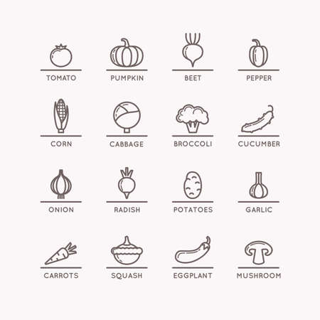 continental: Linear icons of vegetables. Silhouette images of products and food. Vector illustration. Illustration