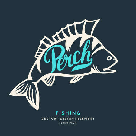 perch: Modern hand drawn lettering word Perch. Calligraphy brush and ink. Vector illustration Fish