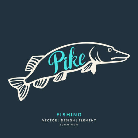 pike: Modern hand drawn lettering word Pike. Calligraphy brush and ink. Vector illustration Fish
