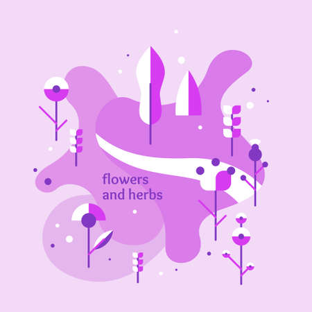 Vegetation background. Elements for design poster. Various plants and flowers on the field. Vector illustration.