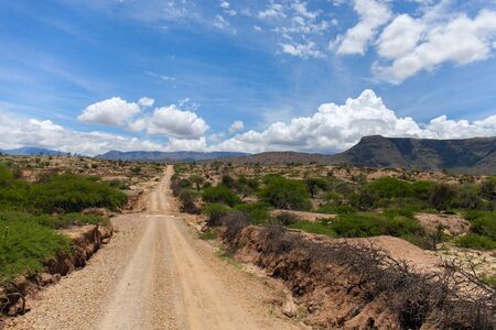 cholla: Dirt road leading up into rough mountains in Bolivia