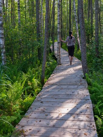 Wooden path in Estonia. Wooden footbridge across swamp in the forest