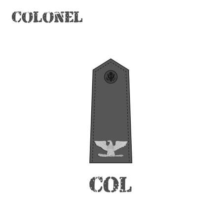 Realistic vector icon of the chevron of the Colonel of the US Army. Description and abbreviated name