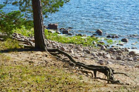 lia: By the lake