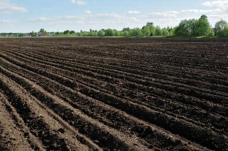Patrón de hileras de surcos en un campo arado preparado para plantar cultivos en primavera. Vista horizontal en perspectiva.
