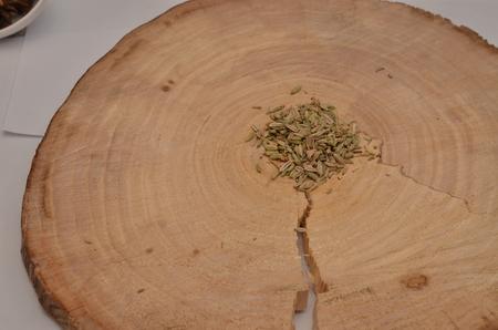 finocchio: Semi di finocchio su un taglio trasversale di un albero