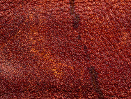 Skin texture. Closeup of leather texture. Leather products Stockfoto