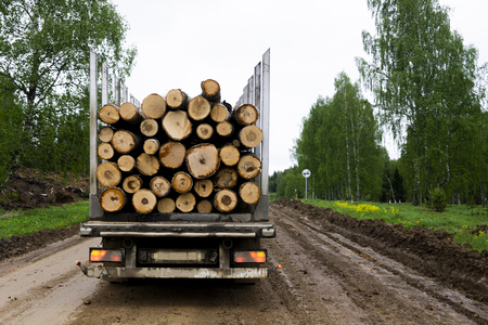 Tip truck transportation of sawn timber. The truck transports logs, on the road. Cut logs are loaded on a truck. Large truck transporting wood. Archivio Fotografico