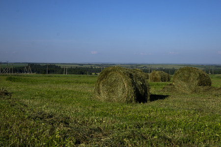 Straw bales on a field in the foreground.  Harvest of hay. Clouds in the sky. Agricultural farm. Hills with cultivated fields and hay bales