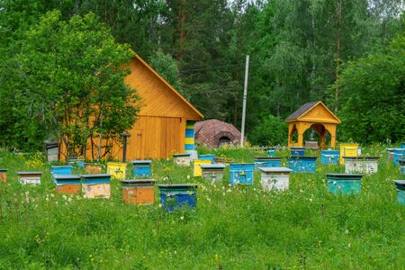 Hives in an apiary in a spring garden. Honey business concept.  Shulgan-Tash Nature Reserve. Stock Photo