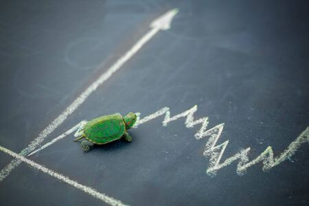 Slow but stable investment or low fluctuate stock market concept, miniature figure turtle or tortoise walking on chalkboard with drawing price line graph of stock market value Stock Photo