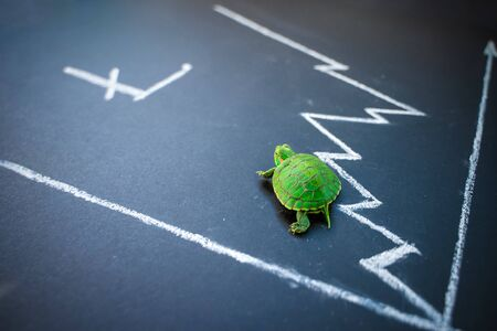 Slow but stable investment or low fluctuate stock market concept, miniature figure turtle or tortoise walking on chalkboard with drawing price line graph of stock market value. Litecoin exchange rate.