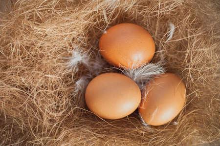 bagging: Easter eggs on hay