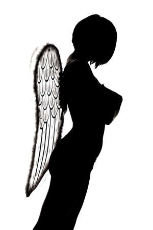 silhouette of an angel photo