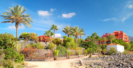 landscape with buildings and Palma, Canary Islands photo