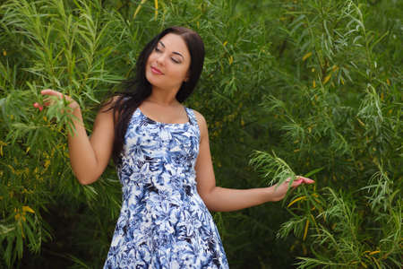 sexy young woman in dress in the grass photo