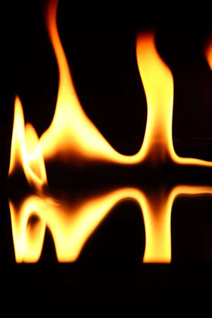 Beautiful fire flames on a black background