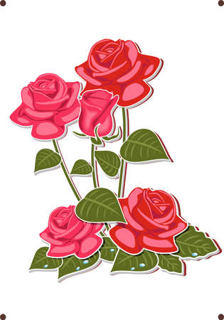 abstract rose: a bouquet of red and pink roses Illustration