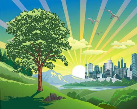 Beautiful Landscape-sunrise Over The City in vector Ilustração