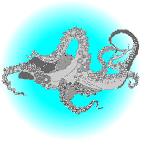 Vector drawing of an octopusKraken isolated