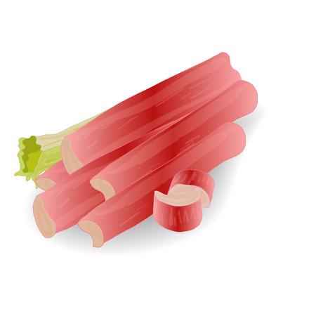 Rhubarb vector set isolated