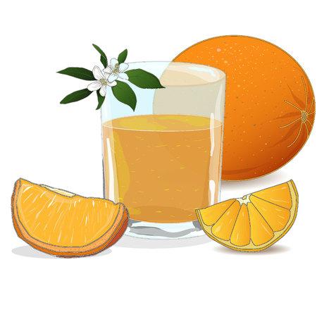 Orange juice and slices of orange isolated on white vector