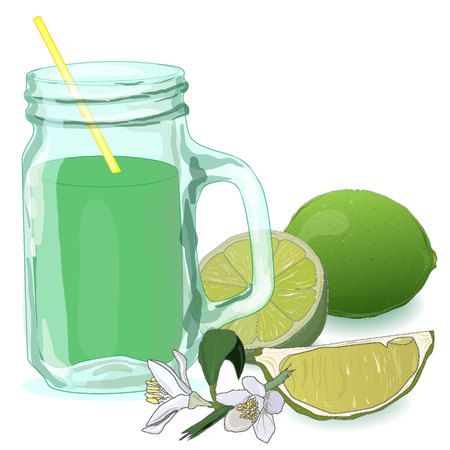 glass filled with fresh made lime juice. Fresh lime vector collection