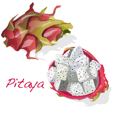 jhy: Pitaya or Dragon Fruit isolated against white background. Vector