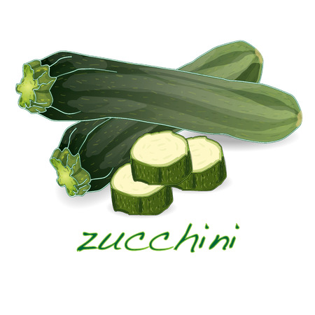 courgette: green zucchini vector vegetables isolated on white