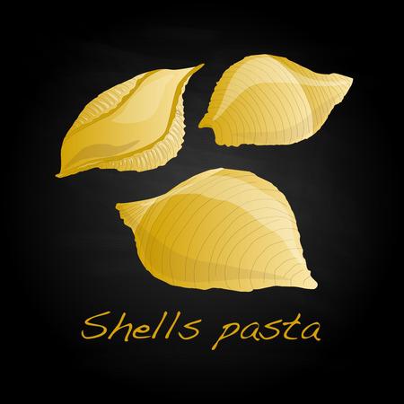 europe closeup: Pasta - Conchiglioni Shell Pasta vector isolated