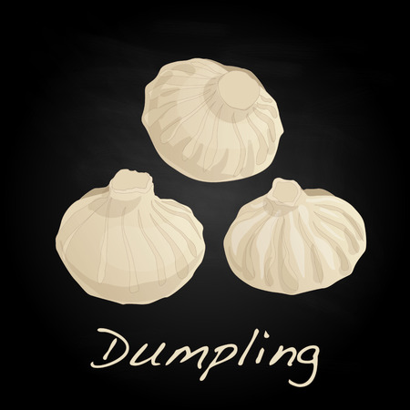 dumpling: Dumpling vector illustration. Isolated.