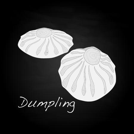 bao: Dumpling vector illustration. Isolated.