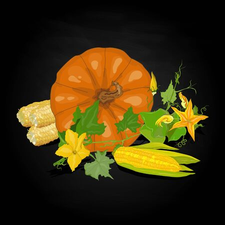 plump: Seasonal background with plump pumpkins, corn and leaves