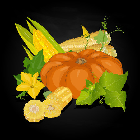 Seasonal background with plump pumpkins, corn and leaves