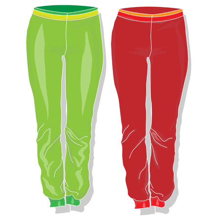 Trousers. Females clothes. Vector illustration isolated.