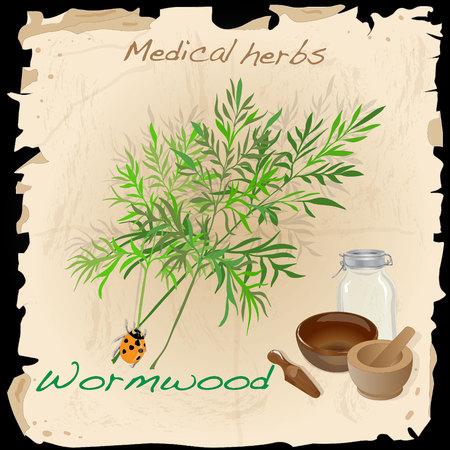 bitter: Wormwood. Medical Herb. Vector illustration.