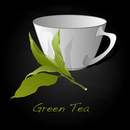 tea plantation: Green tea leaf vector artwork isolated Illustration