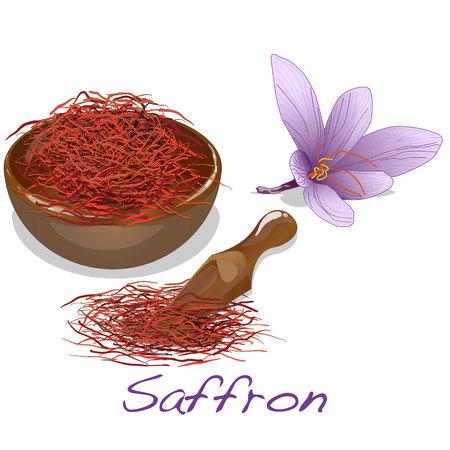 Saffron flower set. Vector isolated.
