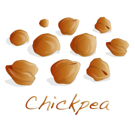 uncooked chickpeas vector on white background Illustration