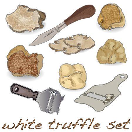 truffe blanche: Truffe blanche ensemble fond blanc isolé Banque d'images