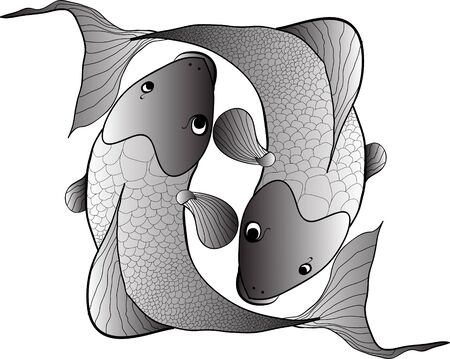 coi carp: black fishes isolated Stock Photo