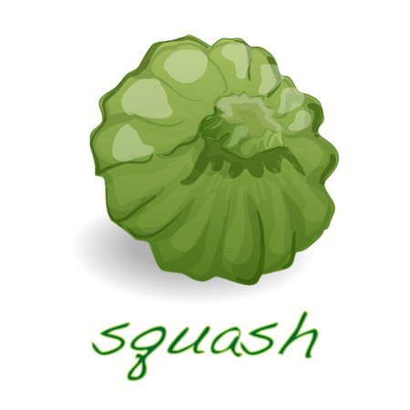 noix saint jacques: Scalloped custard squash (Cucurbita pepo var. patisson), isolated