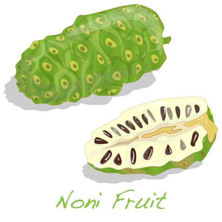 noni: Exotic Fruit - Noni isolated on the white background. Stock Photo