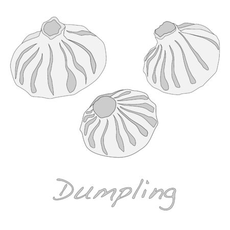 bao: Dumpling illustration. Isolated.