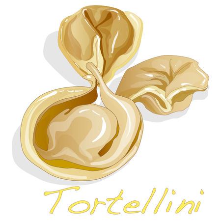 tortellini: Tortellini Italian illustration isolated