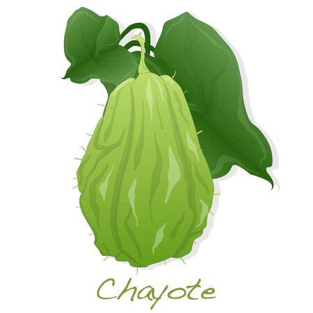 Chayote image isolated on white background