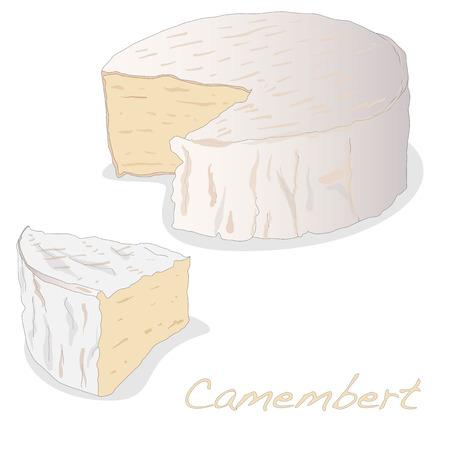 Macro de fromage blanc isolé moule