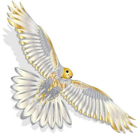 Eagle flying on white background illustration.
