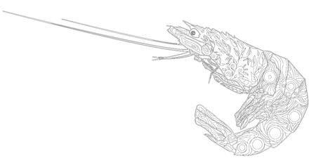 Shrimp line art design for coloring book.  Ornate zentangle crawfish drawing.
