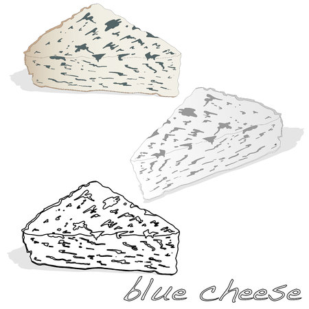 Fat soft blue cheese isolated illustration.